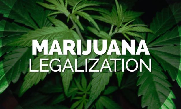 Cannabis & cannabisolie legalisering i 2020